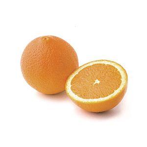 Citrus Orange 'Washington Navel' Standard