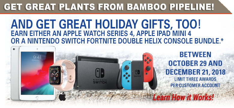 Order plants from Bamboo Pipeline & Get Great Holiday Gifts from Bamboo Pipeline!