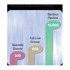 Number of Varieties Ordered chart