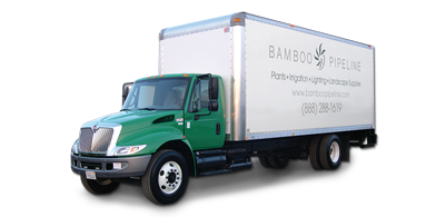 World-class Delivery Services and Logistics